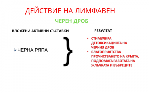 ДЕЙСТВИЕ НА ЛИМФАВЕН(4)