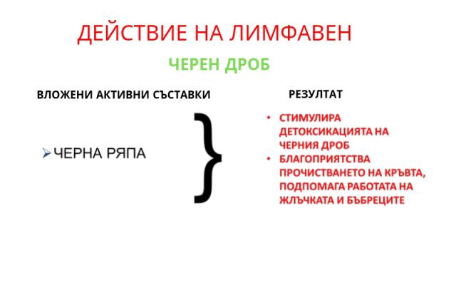Лимфавен действие 4 - Черен дроб
