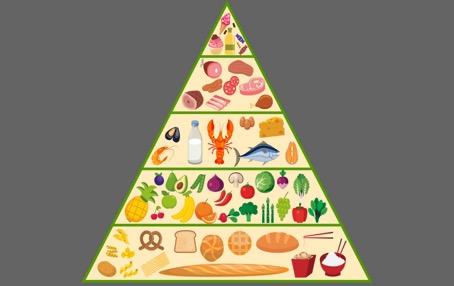 принципите на Хранителната пирамида
